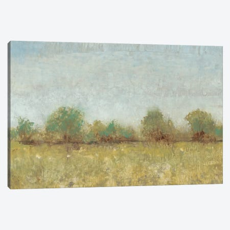 Spring Field I Canvas Print #TOT61} by Tim OToole Canvas Art Print