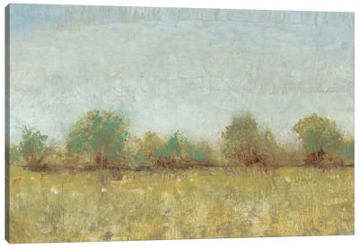 Spring Field I Canvas Art Print