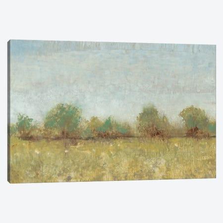 Spring Field I Canvas Print #TOT61} by Tim OToole Canvas Art Print