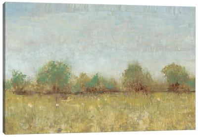 Spring Field I Canvas Art Print