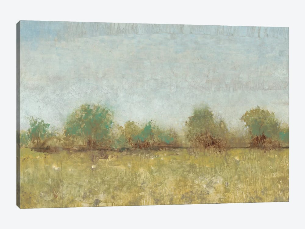 Spring Field I by Tim OToole 1-piece Canvas Artwork