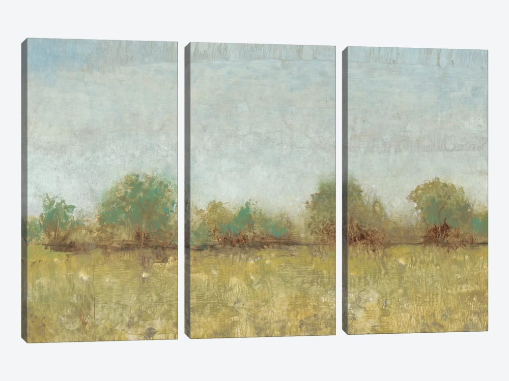 Spring Field I by Tim OToole 3-piece Canvas Artwork