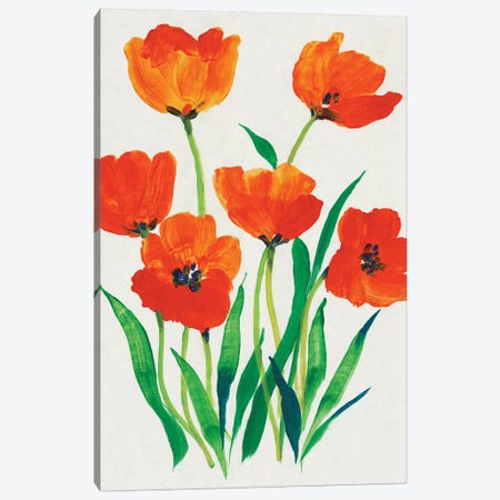 Red Tulips in Bloom I Canvas Print #TOT621} by Tim OToole Canvas Art Print