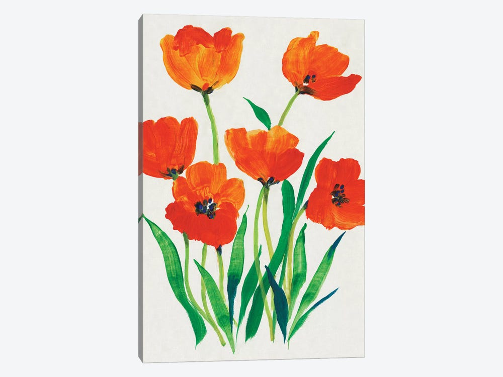 Red Tulips in Bloom I by Tim OToole 1-piece Canvas Artwork
