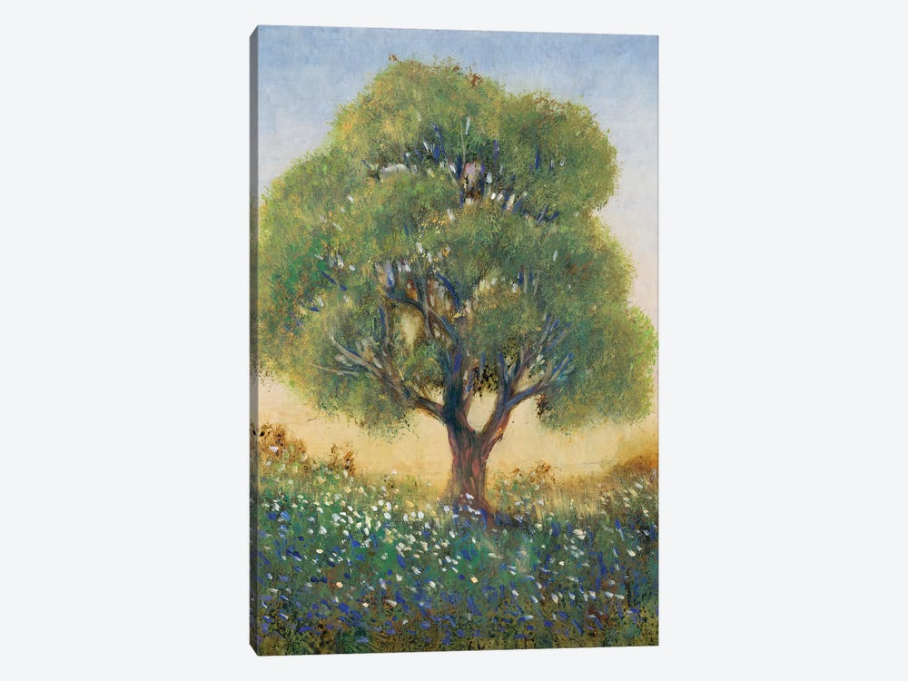 Standing in the Field I by Tim OToole 1-piece Canvas Wall Art