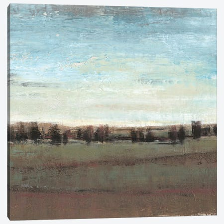 Trees in the Distance I Canvas Print #TOT627} by Tim OToole Canvas Art