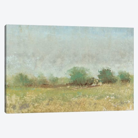 Spring Field II Canvas Print #TOT62} by Tim OToole Canvas Art Print