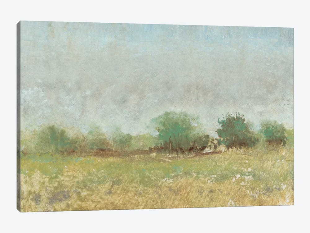 Spring Field II by Tim OToole 1-piece Canvas Art Print