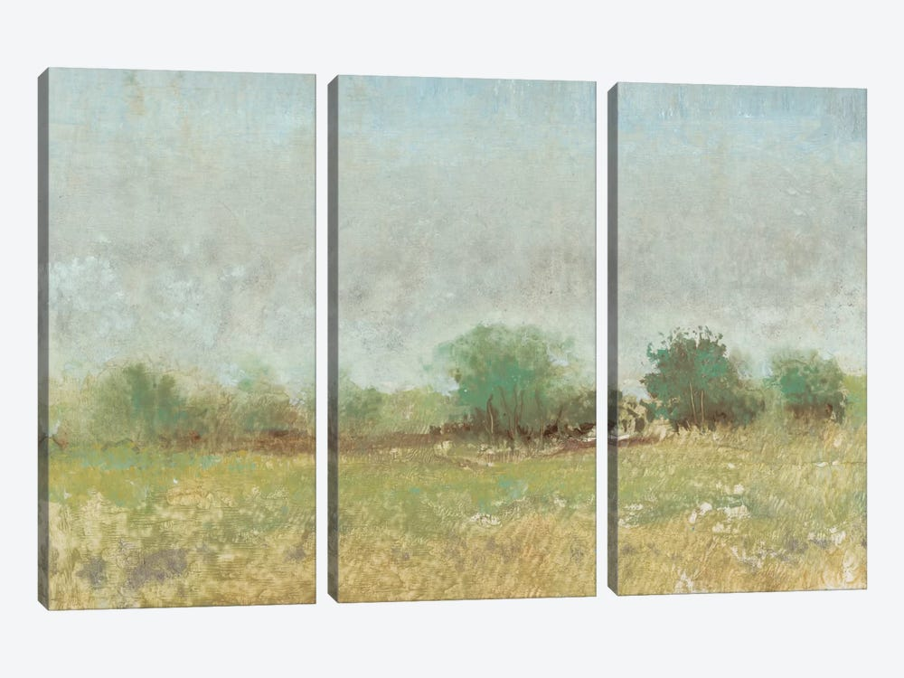 Spring Field II by Tim OToole 3-piece Canvas Print