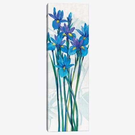 Blue Iris Panel I Canvas Print #TOT631} by Tim OToole Canvas Wall Art