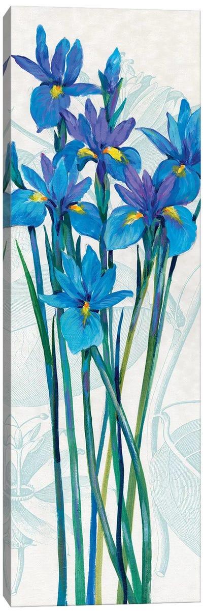 Blue Iris Panel I Canvas Art Print