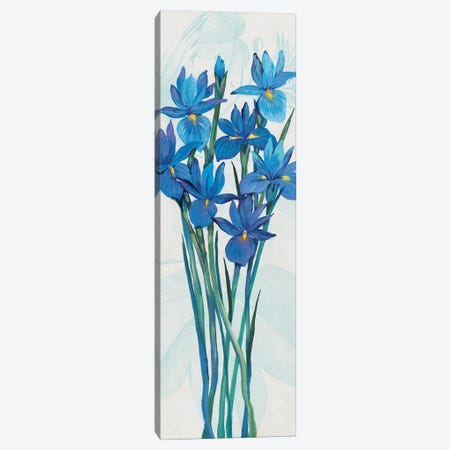 Blue Iris Panel II Canvas Print #TOT632} by Tim OToole Canvas Artwork