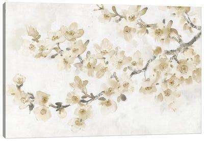 Neutral Cherry Blossom Composition I Canvas Art Print