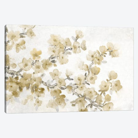 Neutral Cherry Blossom Composition II Canvas Print #TOT640} by Tim OToole Art Print