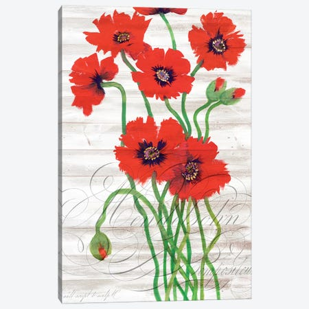 Red Poppy Panel I Canvas Print #TOT644} by Tim OToole Canvas Artwork