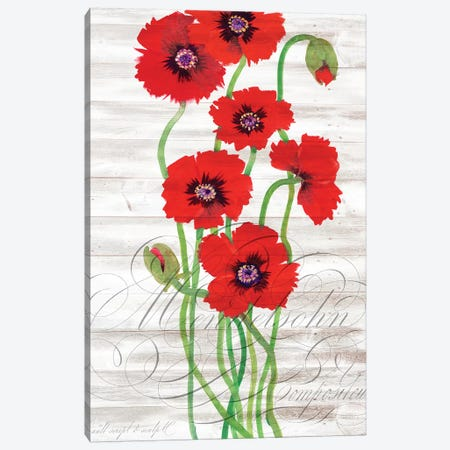 Red Poppy Panel II Canvas Print #TOT645} by Tim OToole Canvas Wall Art