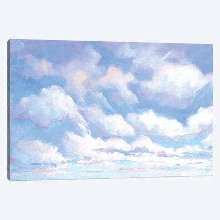 Sky High I Canvas Print #TOT648} by Tim OToole Canvas Print