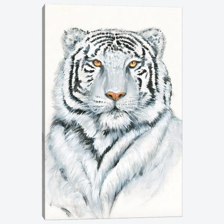White Tiger I 3-Piece Canvas #TOT649} by Tim OToole Art Print