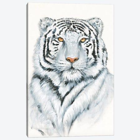 White Tiger I Canvas Print #TOT649} by Tim OToole Art Print