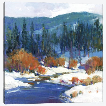 Mountain Creek I 3-Piece Canvas #TOT653} by Tim OToole Canvas Wall Art
