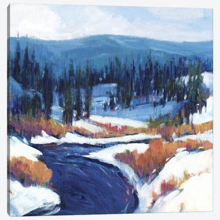 Mountain Creek II 3-Piece Canvas #TOT654} by Tim OToole Canvas Print