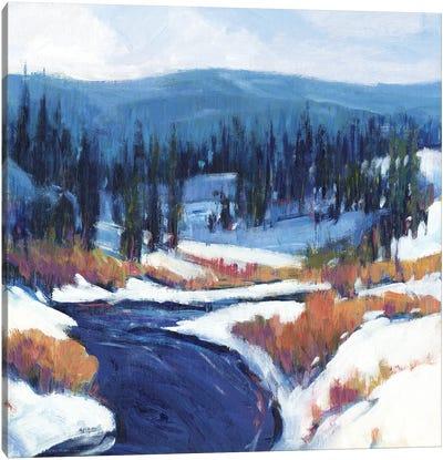 Mountain Creek II Canvas Art Print