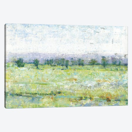 Mountain Impressions I 3-Piece Canvas #TOT655} by Tim OToole Art Print
