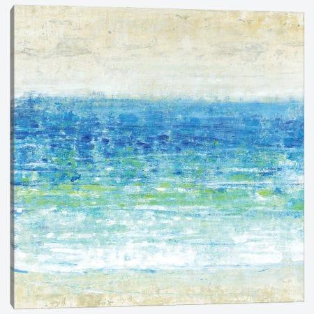 Ocean Impressions I Canvas Print #TOT657} by Tim OToole Art Print