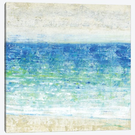 Ocean Impressions II Canvas Print #TOT658} by Tim OToole Canvas Artwork