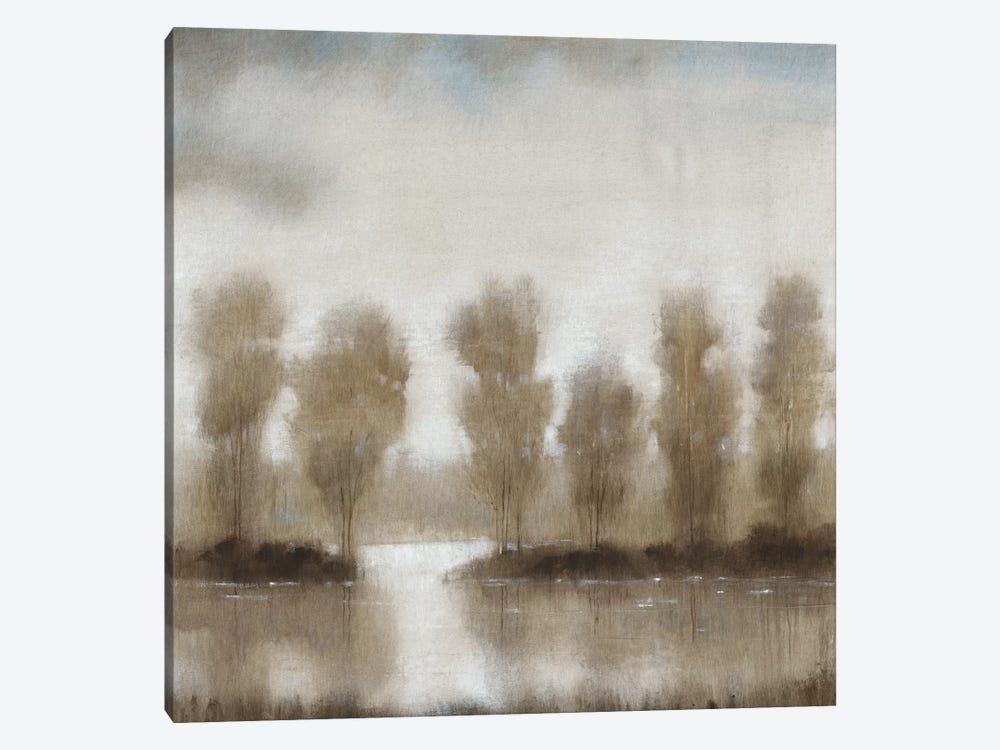 Subtle Reflection I by Tim OToole 1-piece Canvas Art