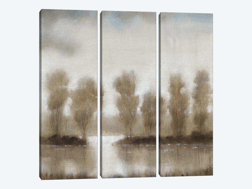 Subtle Reflection I by Tim OToole 3-piece Canvas Wall Art