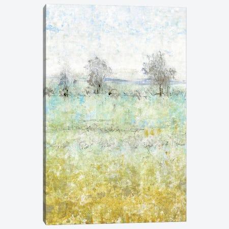 Shedding Light II Canvas Print #TOT660} by Tim OToole Canvas Art Print