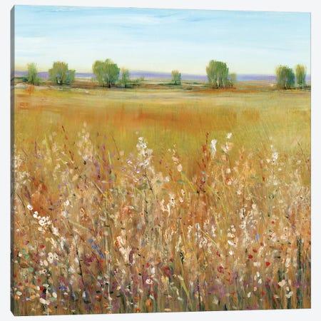Abundance of Wildflowers I Canvas Print #TOT661} by Tim OToole Canvas Print