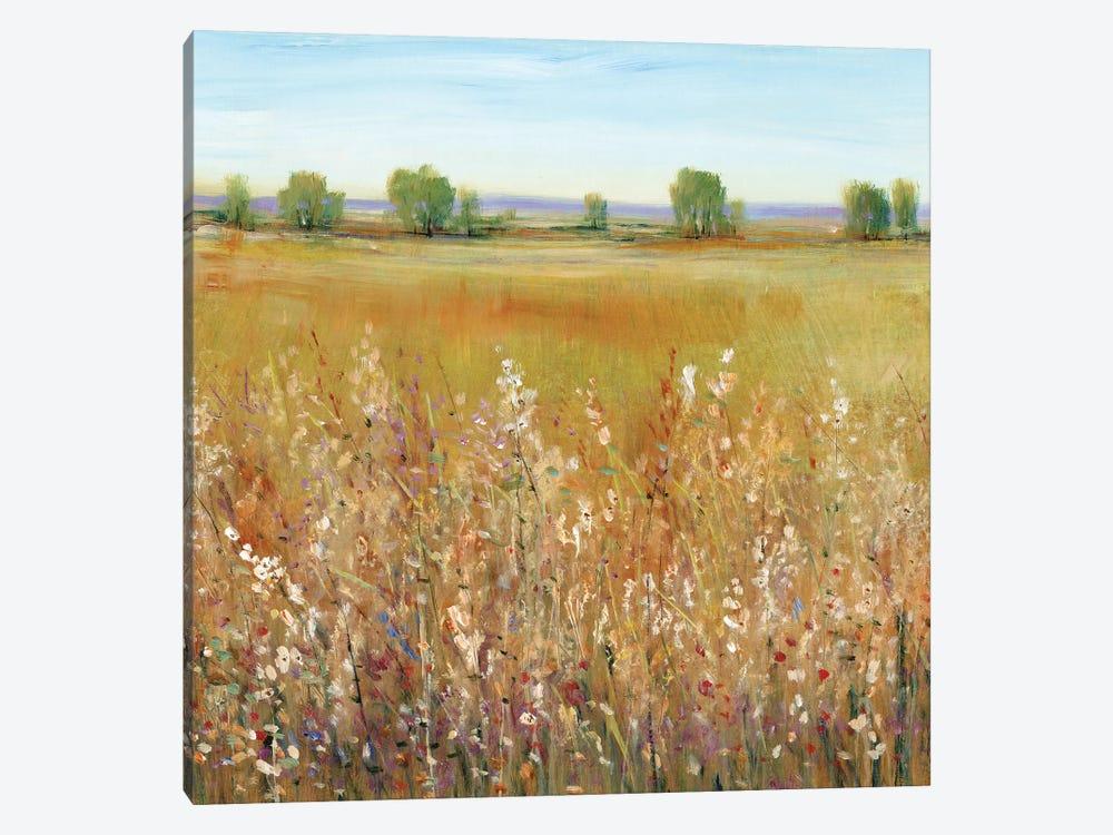 Abundance of Wildflowers I by Tim OToole 1-piece Canvas Wall Art