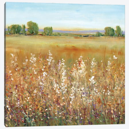 Abundance of Wildflowers II Canvas Print #TOT662} by Tim OToole Art Print