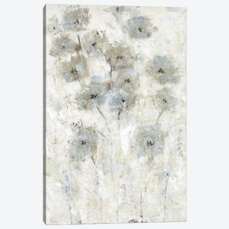 Early Bloom II 3-Piece Canvas #TOT668} by Tim OToole Art Print