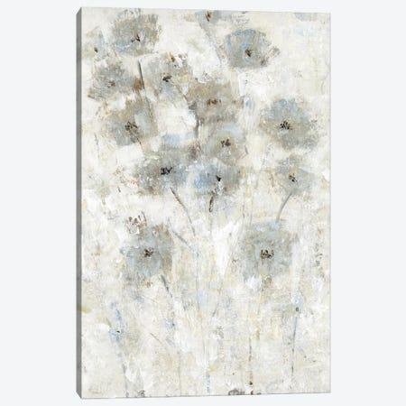 Early Bloom II Canvas Print #TOT668} by Tim OToole Art Print
