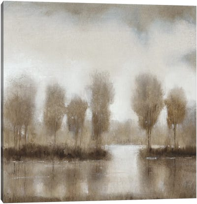 Subtle Reflection II Canvas Art Print