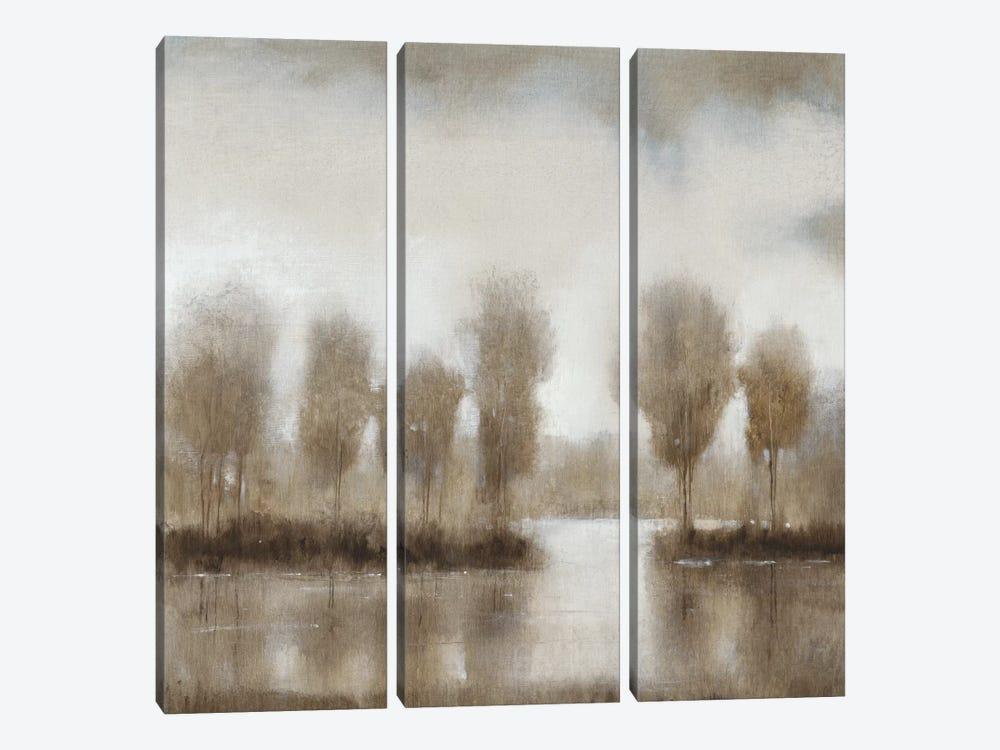 Subtle Reflection II by Tim OToole 3-piece Art Print