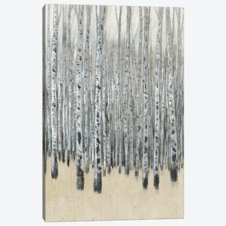 Neutral Aspen I Canvas Print #TOT675} by Tim OToole Canvas Print