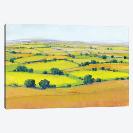 Patchwork Vista II Canvas Print #TOT678} by Tim OToole Canvas Artwork