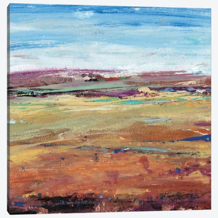 Terra Vista I 3-Piece Canvas #TOT67} by Tim OToole Canvas Art