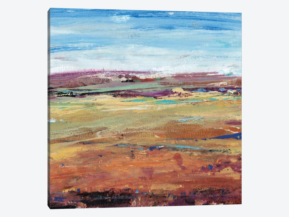 Terra Vista I by Tim OToole 1-piece Canvas Artwork