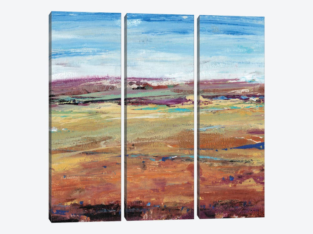 Terra Vista I by Tim OToole 3-piece Canvas Artwork