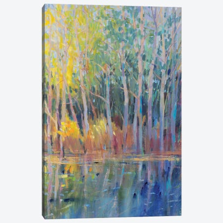 Reflected Trees I Canvas Print #TOT683} by Tim OToole Canvas Art Print