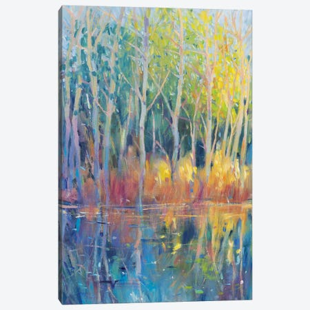 Reflected Trees II Canvas Print #TOT684} by Tim OToole Canvas Wall Art