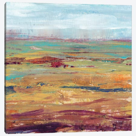 Terra Vista II Canvas Print #TOT68} by Tim OToole Canvas Art Print