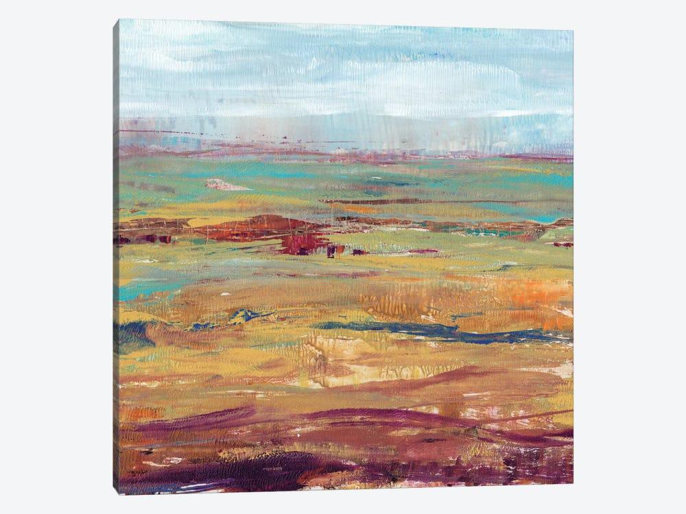 Terra Vista II by Tim OToole 1-piece Canvas Art Print