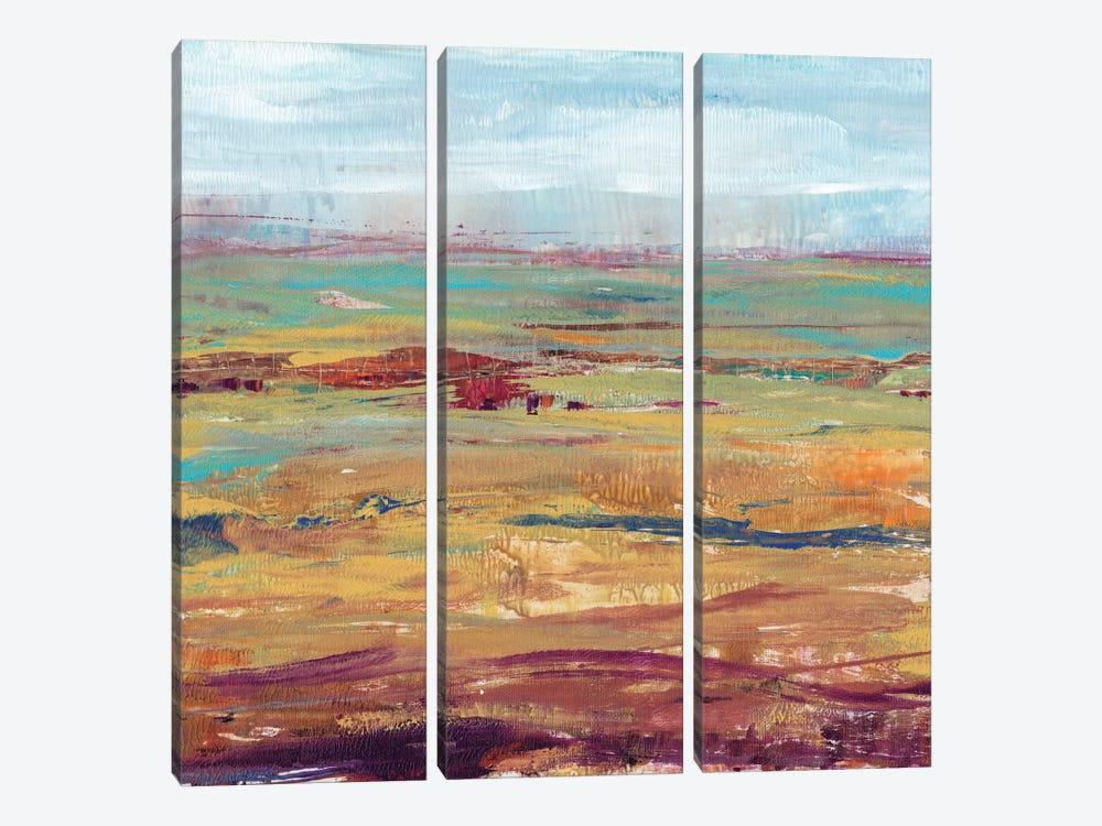 Terra Vista II by Tim OToole 3-piece Canvas Art Print