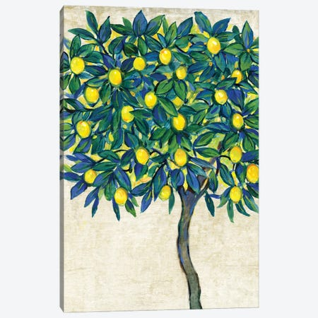 Lemon Tree Composition I Canvas Print #TOT693} by Tim OToole Canvas Art